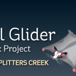 Squirrel Glider Urban Nest Box Project_masthead_large