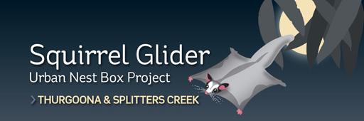 Squirrel Glider Urban Nest Box Project_masthead_small