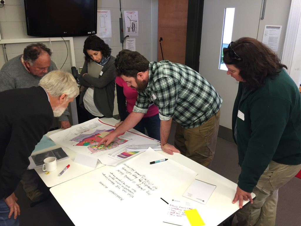 Facilitated group session at the Squirrel Glider Monitoring Plan Workshop