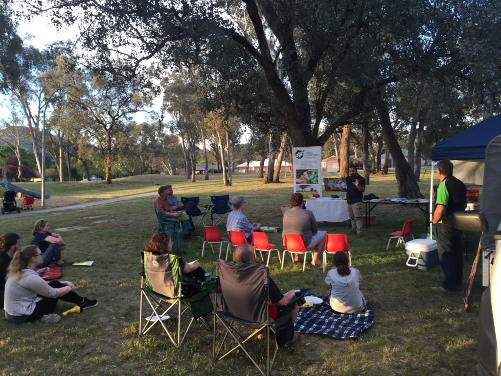 Dr Damian Michael presenting at 'Holloween', a community event in Thurgoona sharing results from the hollow-bearing tree project and conducting a search for hollow-dependent fauna (10/11/2017).